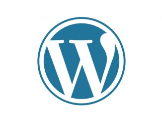 Логотип для сайта на wordpress