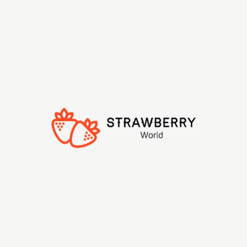 STRAWBERRY WORLD